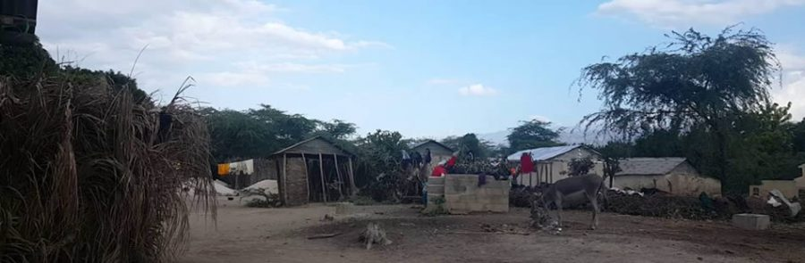 Noticias desde Haití
